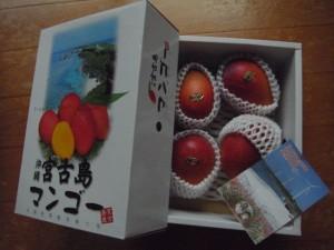 夏気分な贈り物